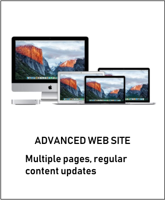 ADVANCED WEB SITE Multiple pages, regular content updates